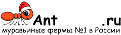 Муравьиные фермы AntFarms.ru - Астрахань